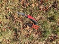 Bittersweet left of tools